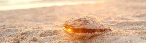 musling-med-perle